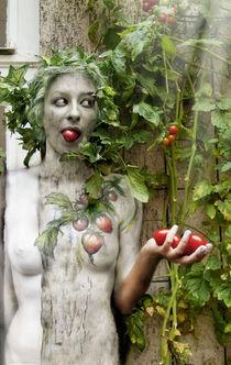tomatoe filcher by Julie Boehm