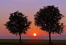 Sun goes down von watzmann