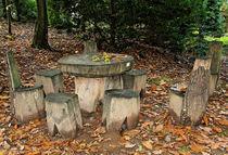 Rastplatz im Herbstwald von watzmann