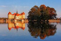 Schloss Moritzburg by watzmann