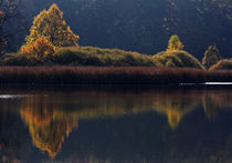 Mystic Lake by watzmann