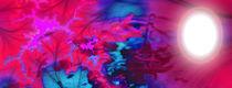 Weg ins Licht by Cloude Vigal << Grafiknaturearts