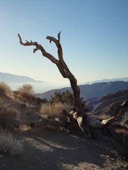 Road-trip-03feb2011-0278