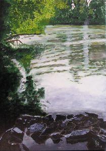 Amazonas bei Raunheim von Karl-Heinz Schmelz