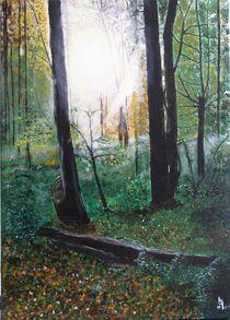Sonnenherbstwald von Karl-Heinz Schmelz
