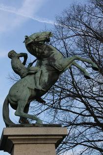 Reiter von Altenburger Reinhold