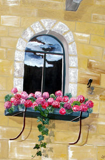 Fensterblick von elvi