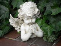 Engel by fotozukunft