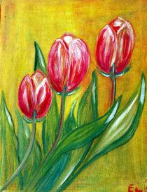 Tulpen von elvi