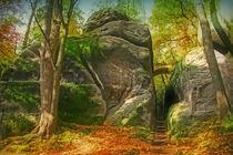 Kraftort; Herbst by moqui