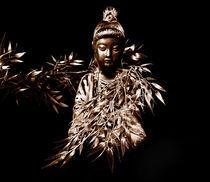 Die Buddhistin von Stefan Grajek