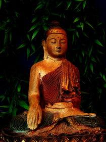 Buddha im Bambus by Stefan Grajek