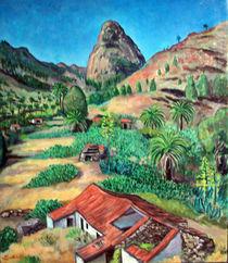 Das Tal Benchijigua von ashankit