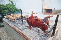hunger auf grillfleisch von ralf werner froelich