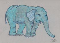 der lustige Elefant von Tania Schöpke