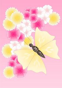 Schmetterling auf Blüten by deboracilli