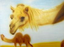 Kamel von Günter Stieger