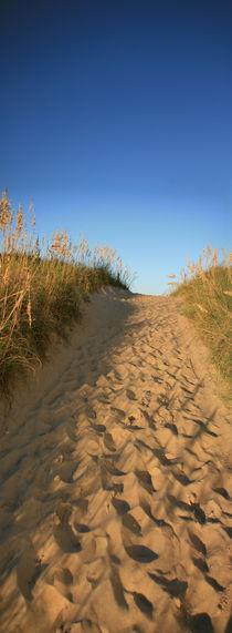 Weg zum Strand von Claudia Hake