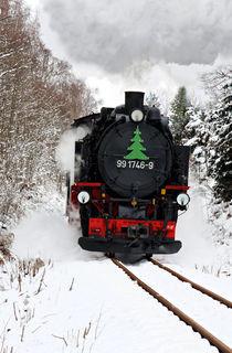 Mit Dampf durch den Winterwald by spiritofnature