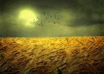 Die Zeit ist reif by Frank Schneidereit