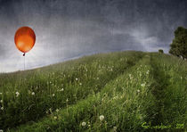 Summer Solstice by Frank Schneidereit