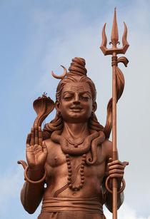 Gott Shiva by Norbert Fenske
