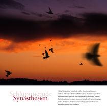 Schlummernde Synästhesien by Anna Katharina Rowedder