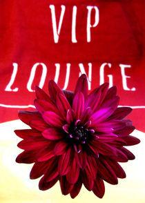 VIP LOUNGE von Miriam Hoffmann