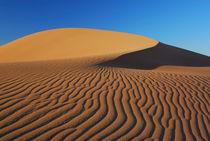 Muster in der Namib zu Sonnenaufgang von Markus Ulrich