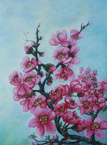Kirschblüten von G.Elisabeth Willner