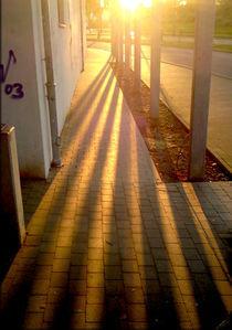 Schönes Licht in der Platte by opaho