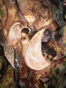 Engel der Magie by INGRID HECHT