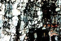 Maya Stones von Robert Schulz