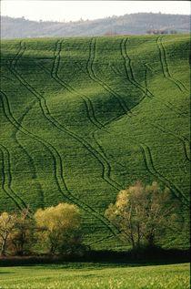 Feldlinien von heiko13