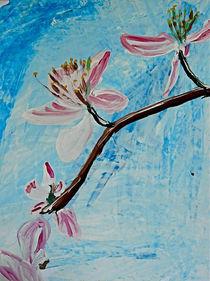 Kirschblüte von Elmo Hopp