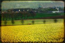 eine Landschaft im Ruhrgebiet  von Katharina Kabara