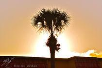 Sunset in Orlando von Emilio Zedan
