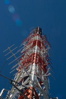 Antenna von safaribears