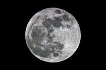 Vollmond - Full Moon von monarch