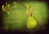 Die perfekte Birne by paulchensmom