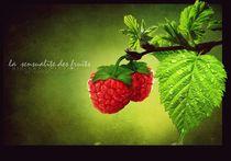 die Sinnlichkeit der Frucht von paulchensmom