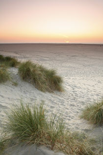 Sonnenuntergang auf Texel von Dominik Brenne