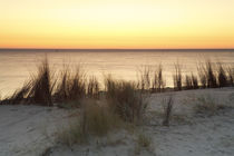 Sonnenaufgang auf Texel by Dominik Brenne