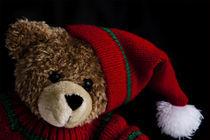 Teddy von Brigitte Jach