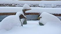 Weiße Weihnachten in Waiblingen von juergenrose