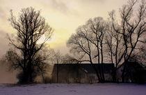 Hof im Nebel by Johanna Leithäuser