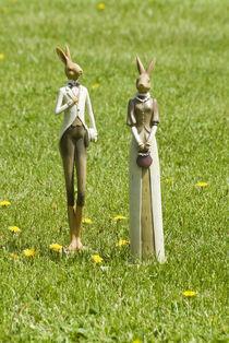 Hasenpaar auf Frühlingswiese