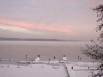 Morgenstimmung am See by Diana vonBohlen