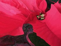mit der Natur im Einklang by Diana vonBohlen