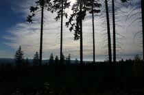 Unterwegs im Harz von rheo
